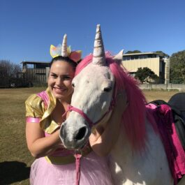 unicorn-fairy